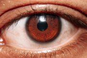 El análisis de la retina puede llevar al diagnóstico temprano del Alzheimer