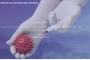 La Enfermería de Alicante pone a disposición de los ciudadanos una web de consultas sobre vacunación en Covid-19
