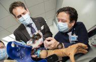 Diseñan un brazo biónico que restaura los comportamientos naturales en pacientes con amputaciones de miembros superiores